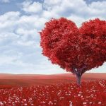 A Healthy Heart – Cupids Love