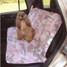 Pet Hair In Vehicle Covering Seats