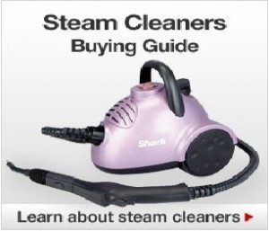 Learning about steam cleaning