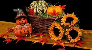 DetailXPerts Celebrates Halloween