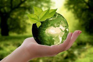 Eco Steam Wash Sustainability Statement