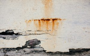 Remove Rust Stains from Car Carpet